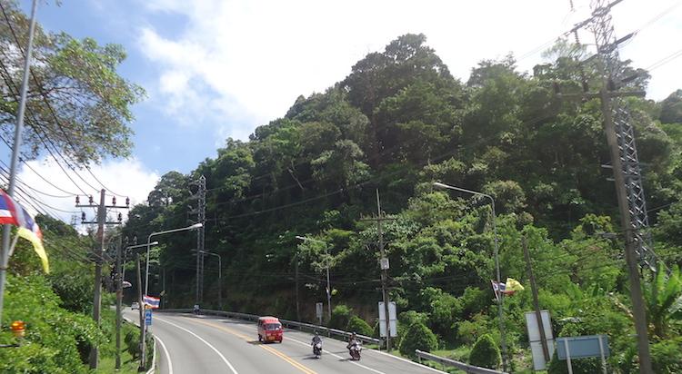 Vegetazione Thailandia