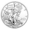 Silver American Eagle moneta d'argento